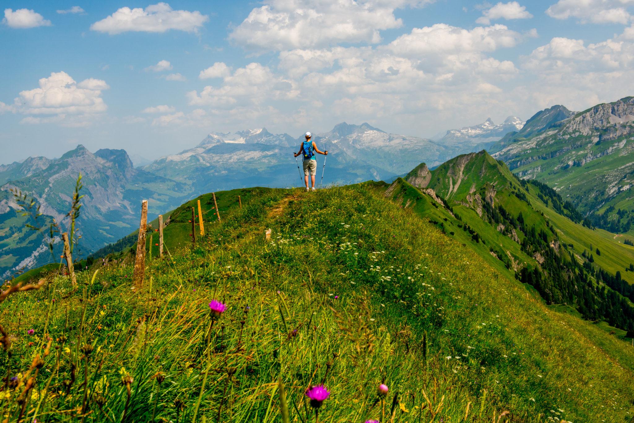 Wanderhöhepunkt Gratwanderweg