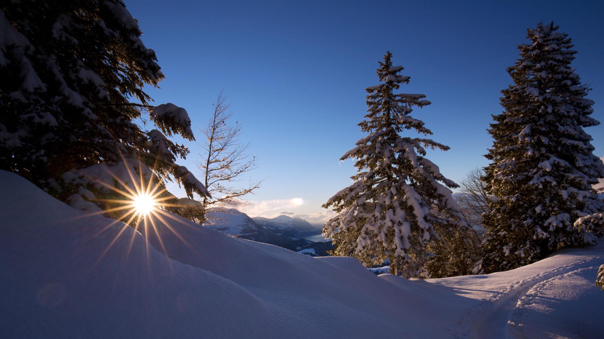 Schneespur in Illgau