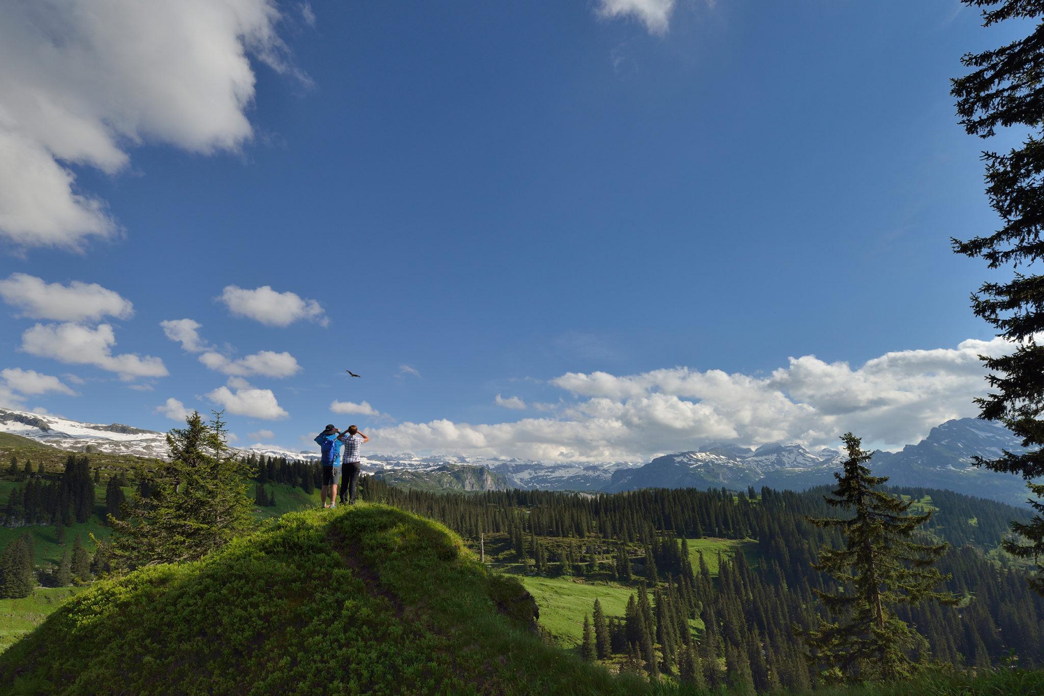 Aussicht Bödmerenwald