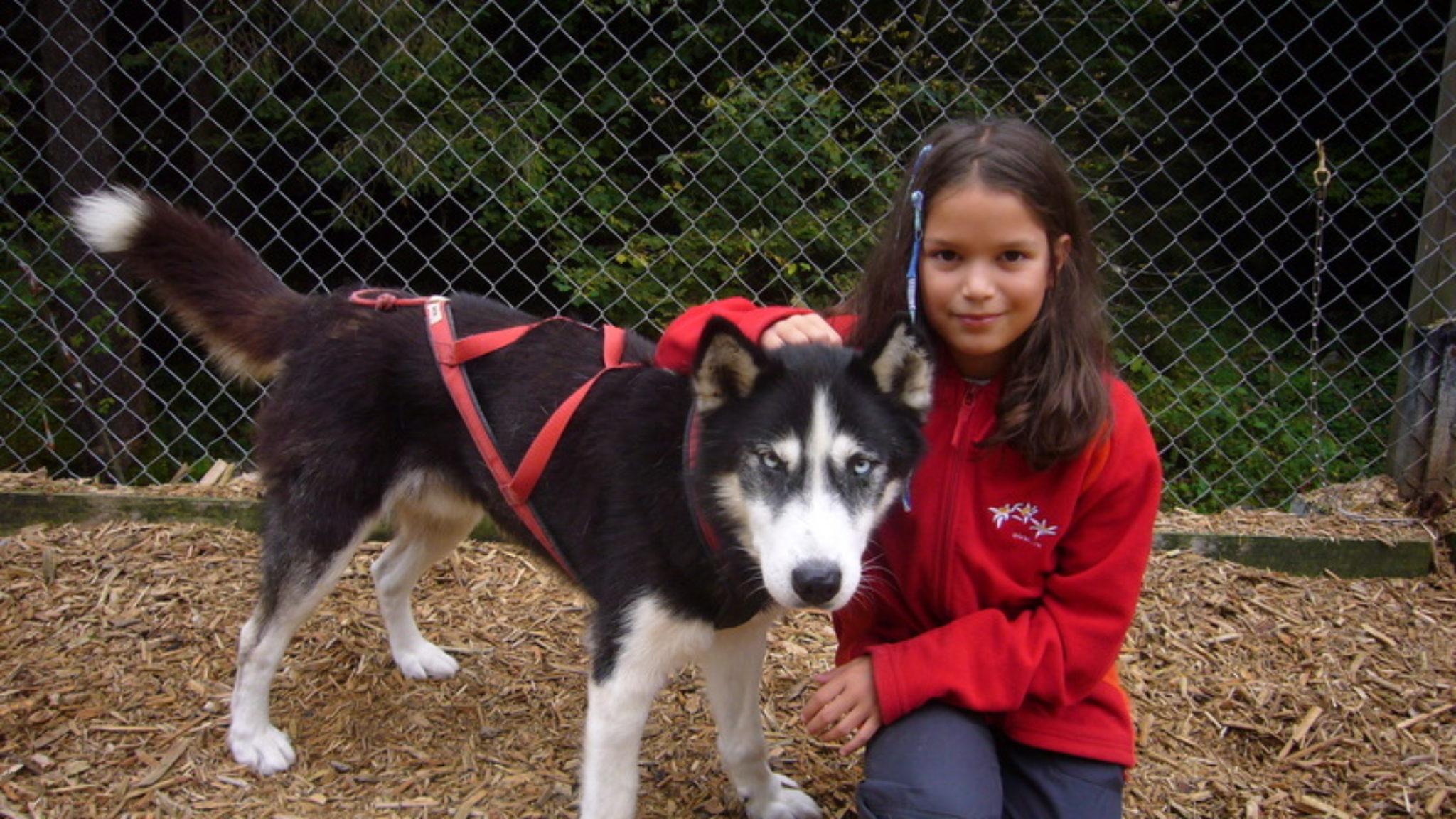 Kinderausflug zu Huskies