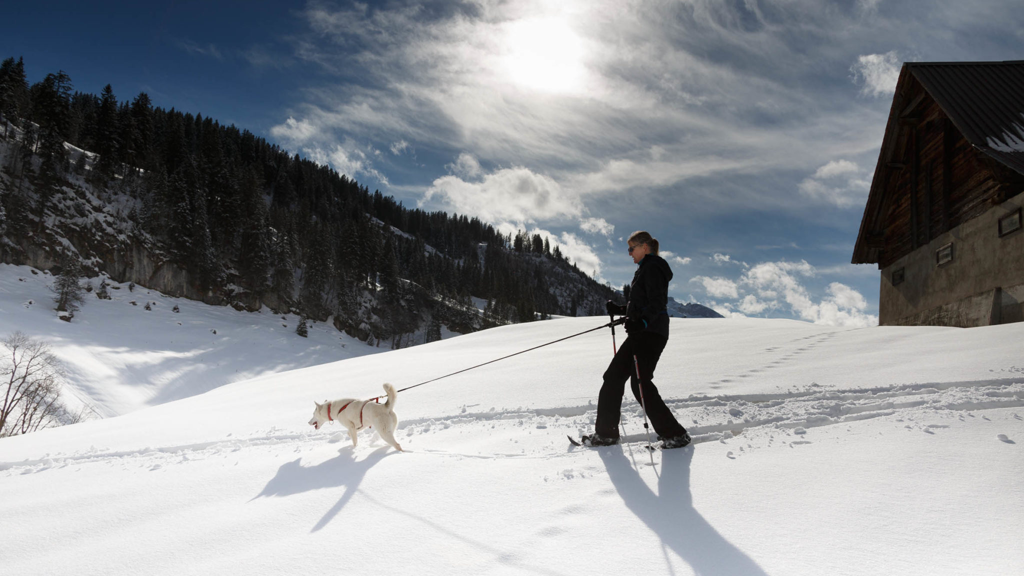 Schneeschuhtour mit Huskyies