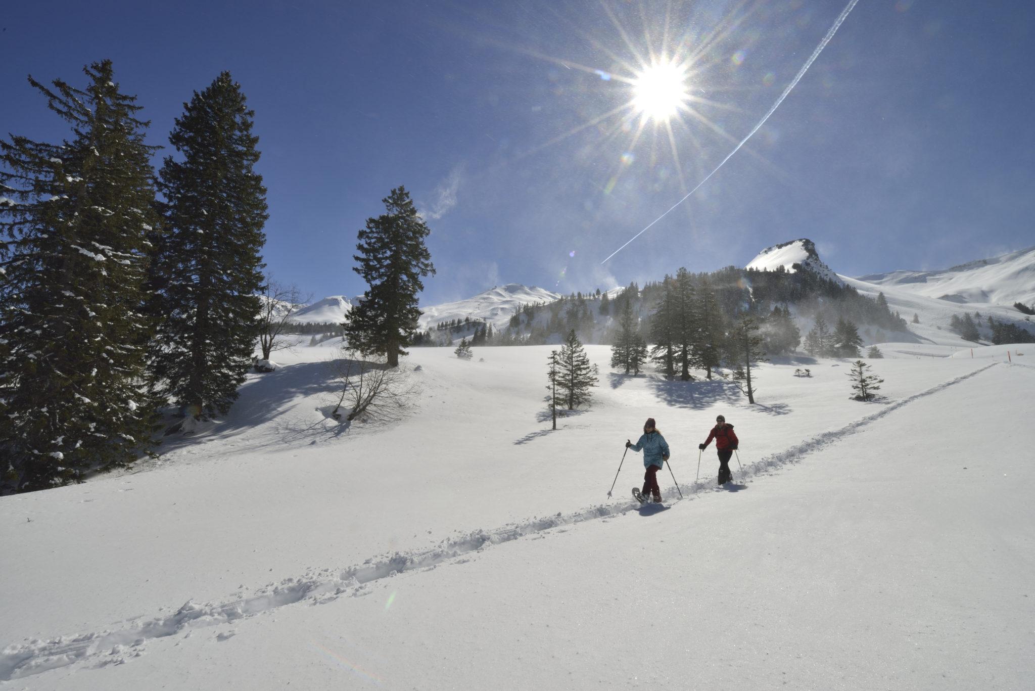 Schneeschuhtour Stoos